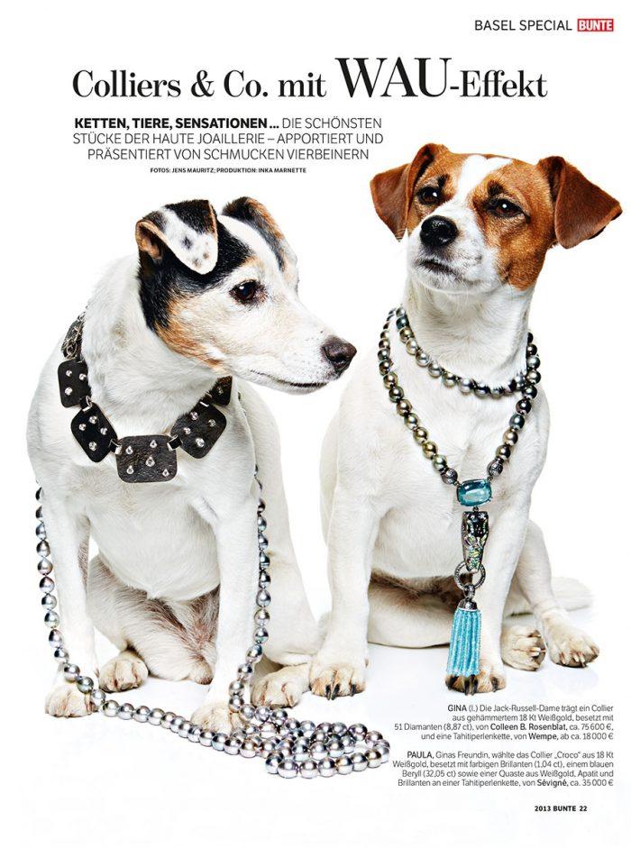person russel terrier münchen